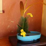 14お花IMG_1163