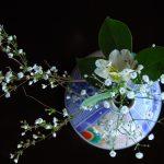 8春12DSC_9837